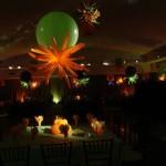 585Delight Events Photos